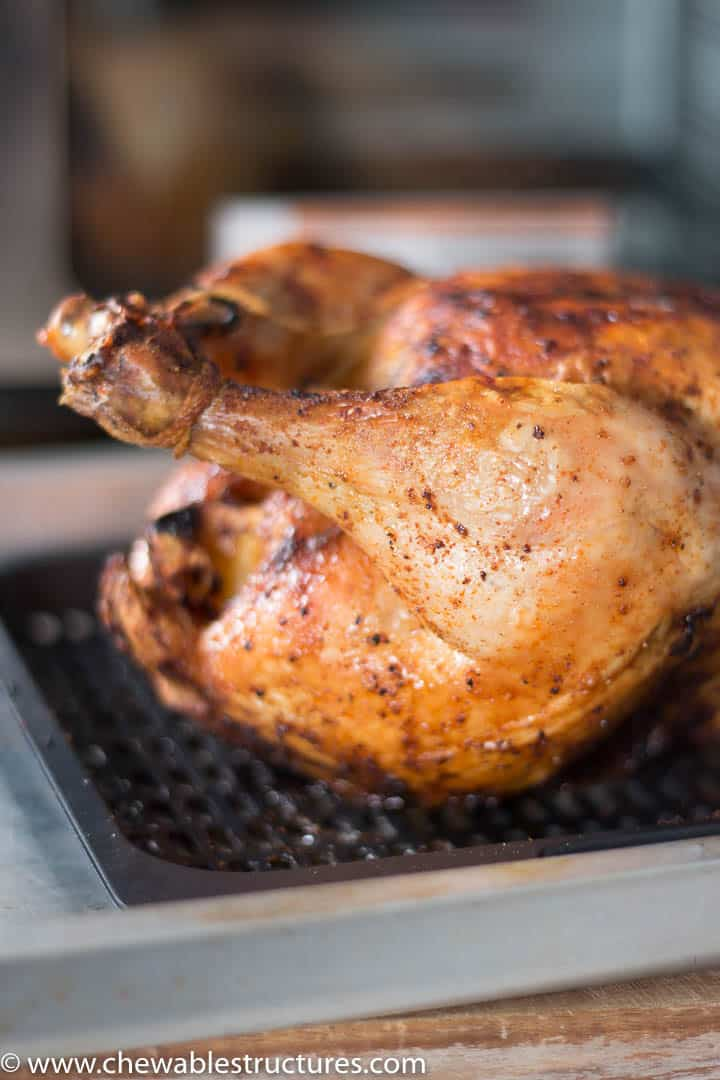 close up of whole cooked chicken on a tray in front of Instant Vortex Plus Air Fryer Oven